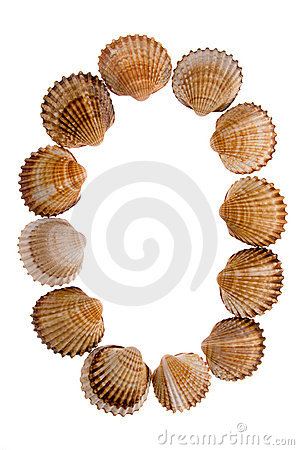 Isolated shell letter O
