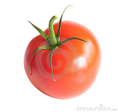 Free Isolated Tomato Stock Photo - 15999420