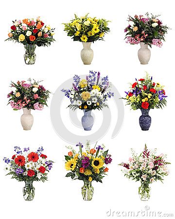 Isolated Vases of Flowers