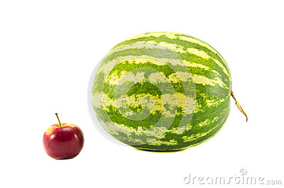 Isolated on white water melon and red apple