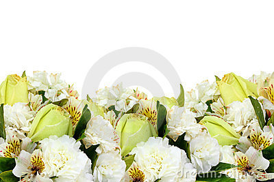 Isolated yellow roses and flowers