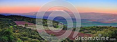 Israel Sunset Landscape