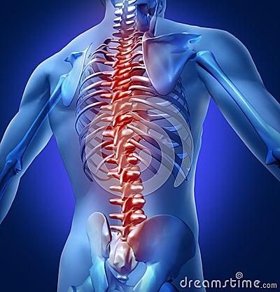 Istota ludzka tylny ból