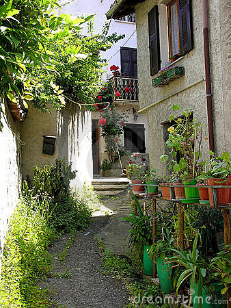 Italian alleyway with roses