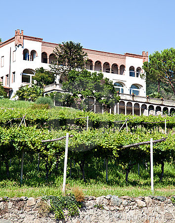 Free Italian Charming Villa In Vineyard Royalty Free Stock Photos - 20922128