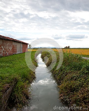 Free Italian Landscape In Piedmont, Stream And Rice Fields In A Rainy Stock Photography - 126804402