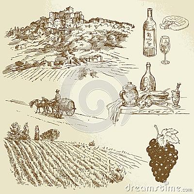 Italian landscape, vineyard