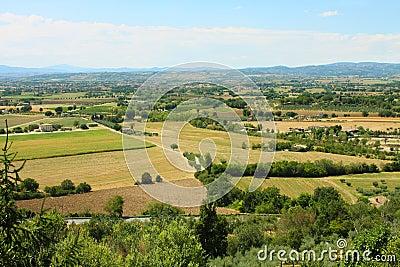 Italian province, fields