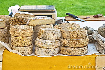 Italian traditional cheese