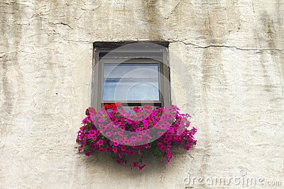 Italian Windowsill With Colorful Flowers