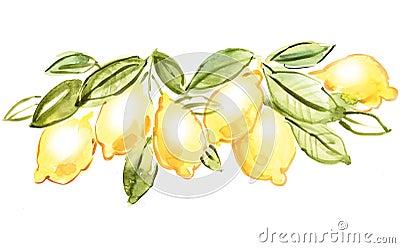 Italienische Zitrone
