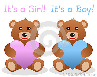 Its a Girl and Boy Teddy Bear