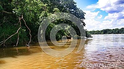 Ivai River