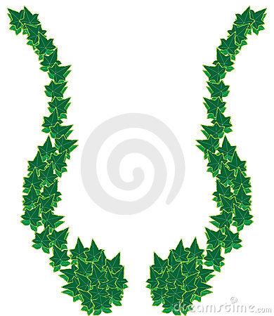 Ivy border frame