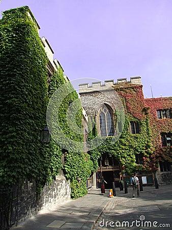 Ivy Castle 1