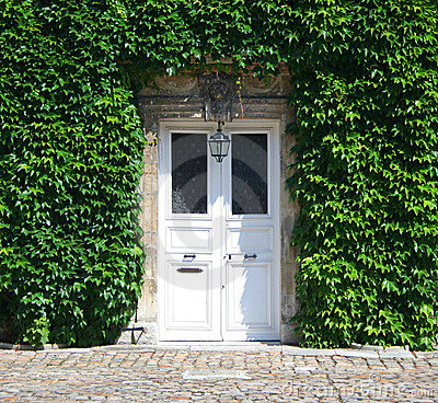 Ivy covered doorway