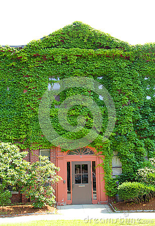 Free Ivy Covered Wall, Entrance, Newspaper Building, Downtown Keene, Royalty Free Stock Photo - 59464595