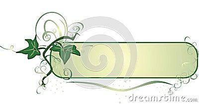 Ivy. Decor