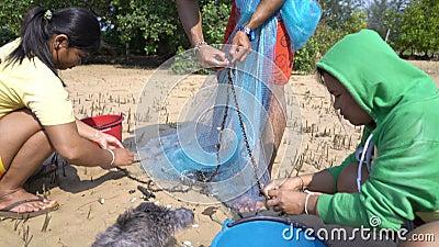 Jóvenes sacan peces pequeños de la red de pesca almacen de video