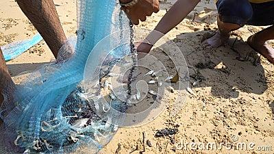 Jóvenes sacan peces pequeños de la red de pesca almacen de metraje de vídeo