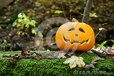 Jack-O-Lantern On a Mossy Log
