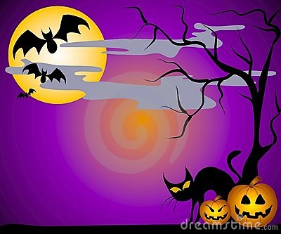 Jack O Lanterns Bats and Cats