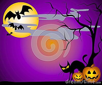 Jack O Lanterns Bats and Cats