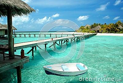 Jadę na wyspę
