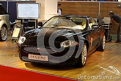 Jaguar Editorial Stock Photo