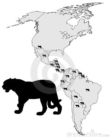 Jaguar distribution