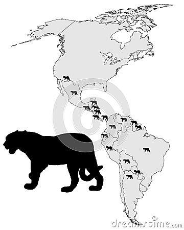 Jaguar distribution