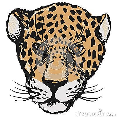jaguar face illustration - photo #9