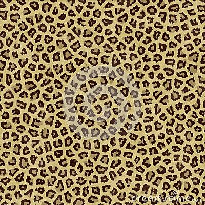 Jaguar Texture Background Fur
