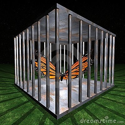 Jail - Prison for one butterfly
