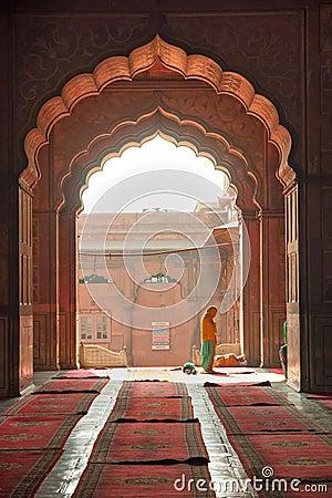 Free Jama Masjid Mosque, Old Delhi, India. Royalty Free Stock Image - 17704186