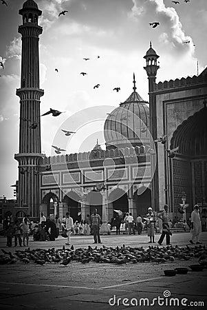 Jama Masjid, New Delhi Editorial Stock Photo