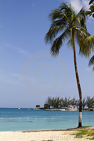 Jamaica Beach Scene