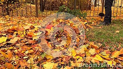 Janitor tast in het najaar geel omgevallen bladeren in één stapel op een zonnige dag stock videobeelden