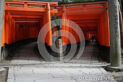 Japan czerwieni tunel