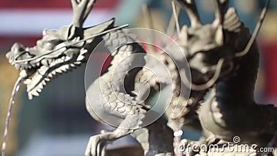 Japan-Lebenreise stock video