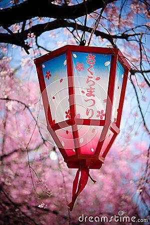 Free Japan Sakura Festival Lantern Stock Images - 19121834