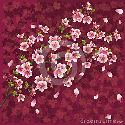 Japanese background with sakura blossom