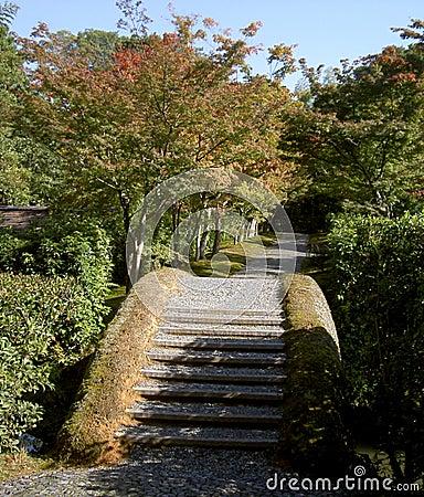 Japanese bridge and shadows