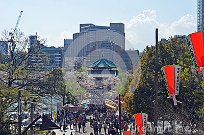 Japanese Cherry Blossoms Festival Editorial Photography