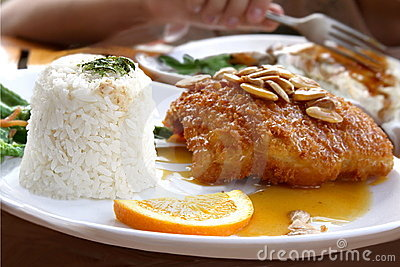 Japanese cuisine -  fried fish with  rice
