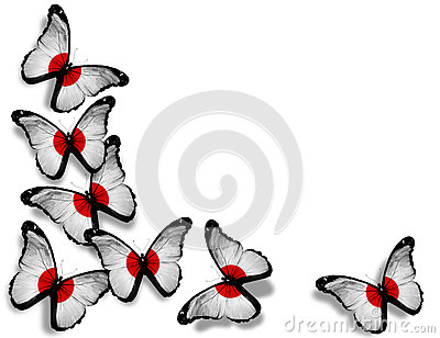 Japanese flag butterflies on white background