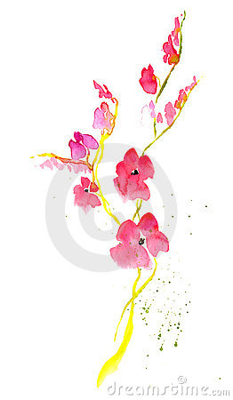 Free Japanese Flower Stock Photo - 9195990
