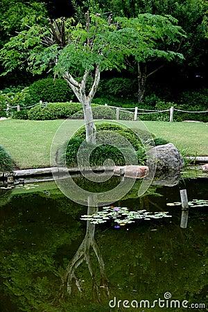 Japanese Garden #3