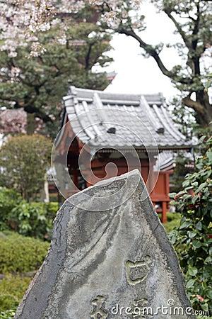 Japanese garden in blossom