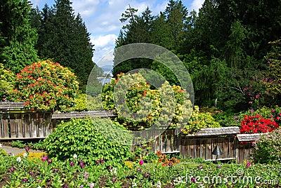 Japanese garden in butchart gardens